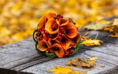 Organizzare un matrimonio in autunno: ecco perché la stagione più romantica dell'anno è perfetta per le vostre nozze
